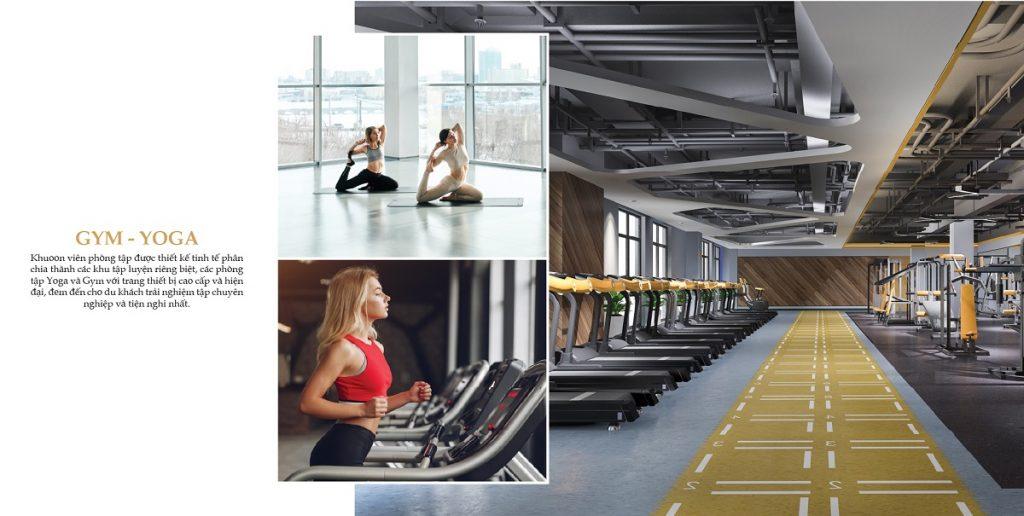 Phòng tập gym cao cấp và hiện đại